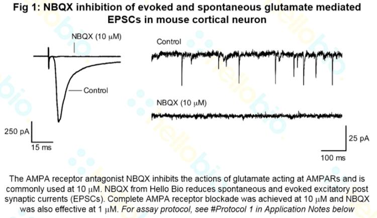 NBQX | AMPA receptor antagonis...