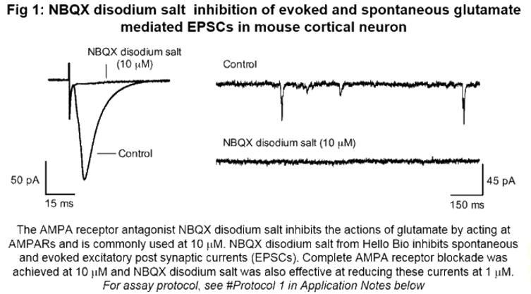 NBQX disodium salt | AMPA rece...
