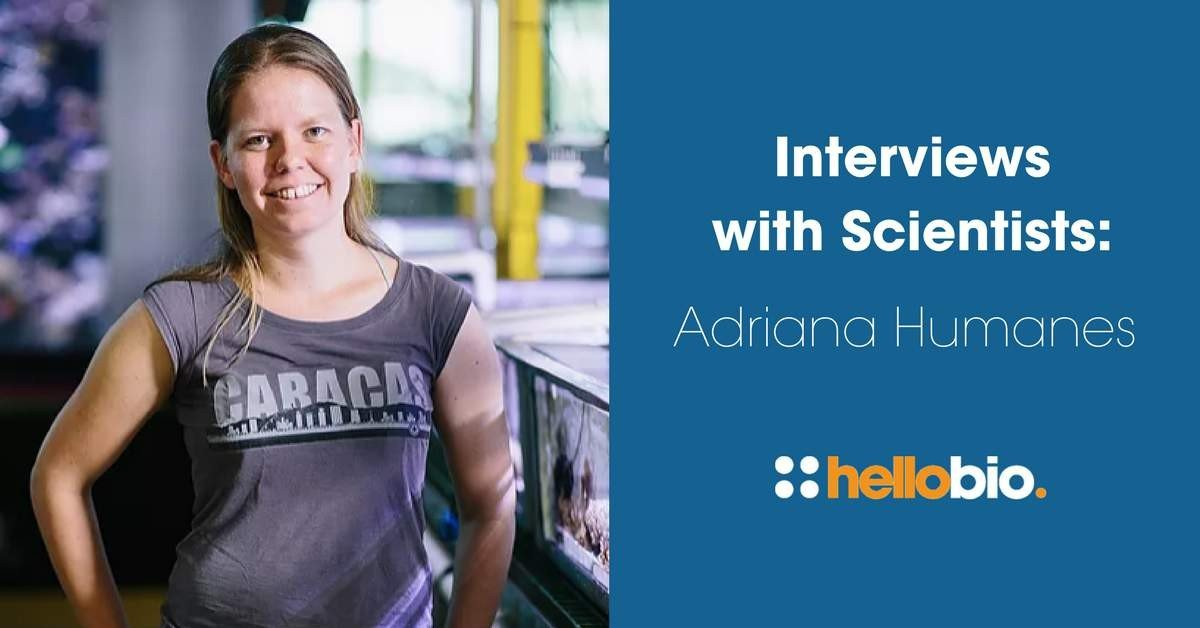 Interviews with Scientists: Adriana Humanes