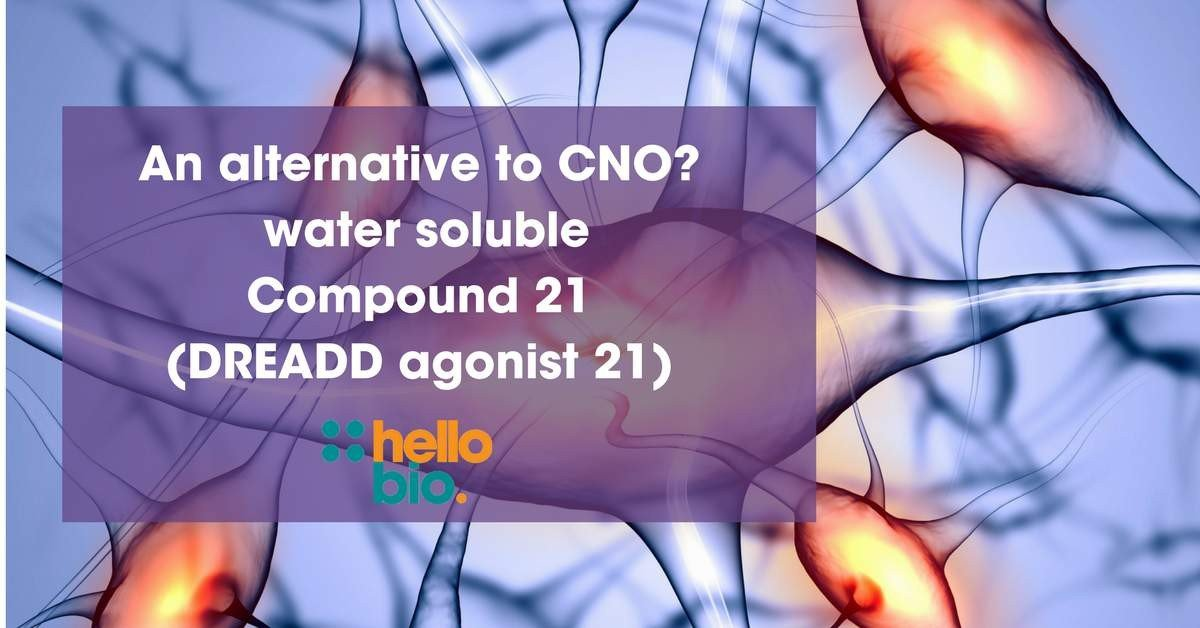 An alternative to CNO? Water soluble Compound 21 (DREADD agonist 21)