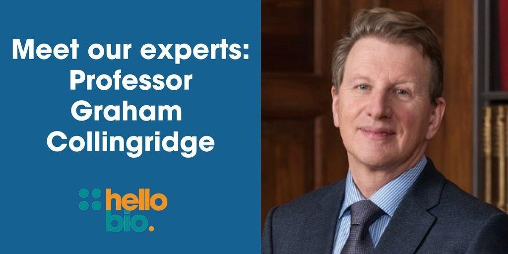 Meet our experts: Professor Graham Collingridge