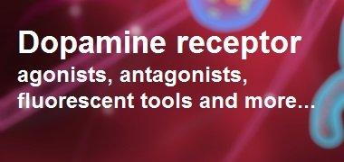 Dopamine receptor research tools