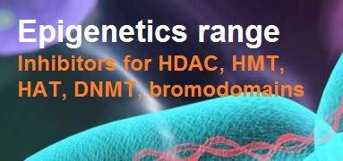 Epigenetics modulators