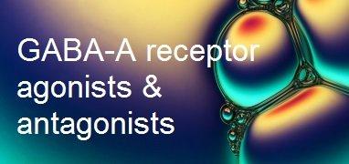 GABA-A receptor range
