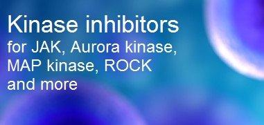 Kinase inhibitors and activators